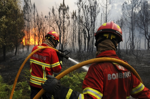Forest fire kills 62 in Portugal; search on for more bodies