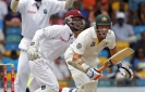 Australia fights back strongly against West Indies