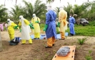 Ebola cases not slowing in Guinea, Sierra Leone