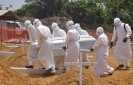 New Ebola cases in single digits for 2nd week, says WHO